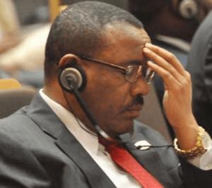 stable, united and rehabilitated Eritrea