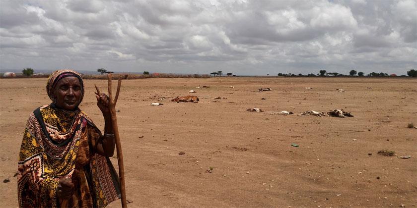 Ethiopia Crisis Worsens as Drought Prevails