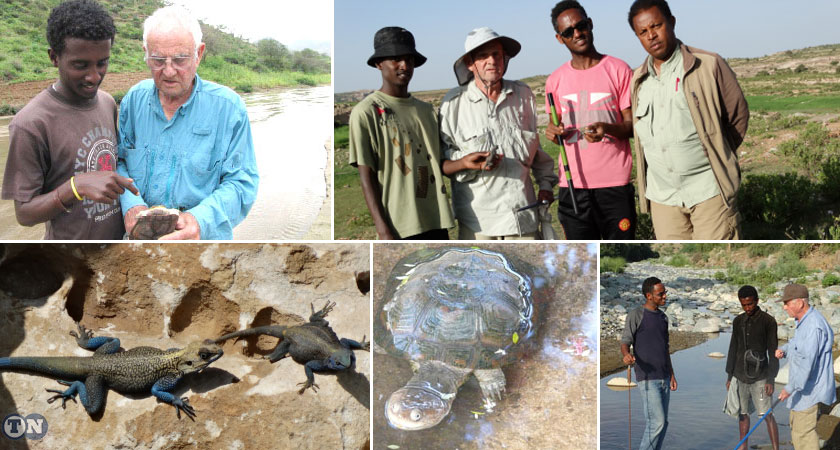 'Eritrea, the Country of Uncharted Biodiversity': Prof. Ted Papenfuss