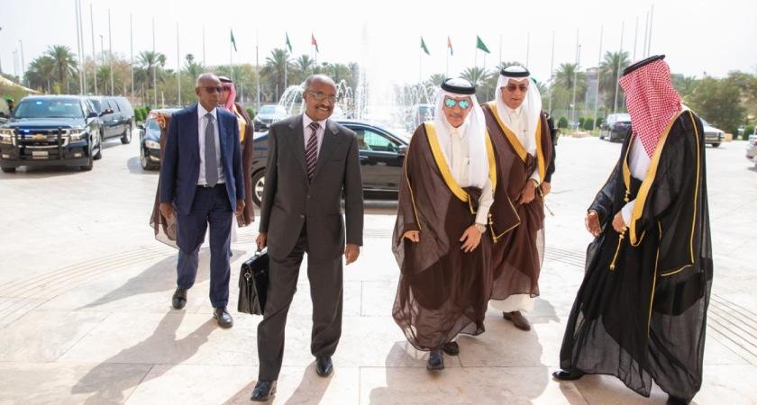 Eritrea Intensifying Diplomatic Activity