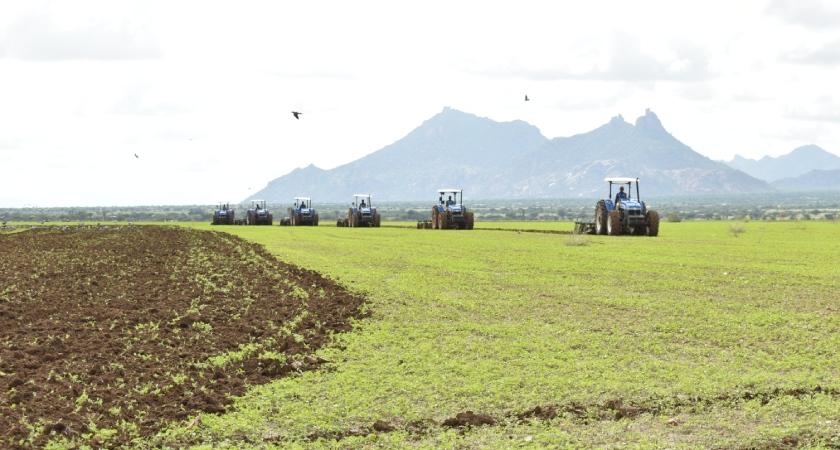 Abundant Rain Lifted Crop Prospects in Eritrea
