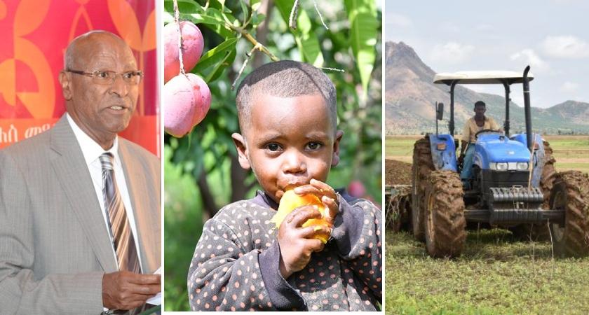Eritrea: World Food Day 2020