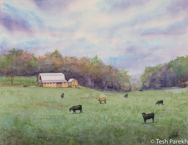 "Gala VA Painting - ""Galax Morning"". 14x18. Watercolor on paper. Available."