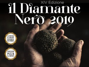 diamnte-nero-scheggino-2019