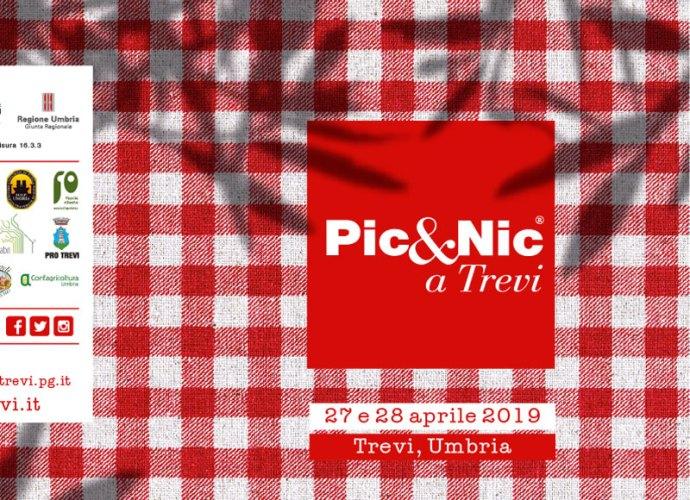 picnic_Trevi