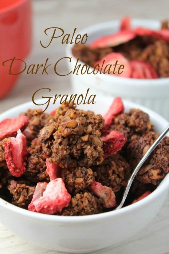 Paleo dark chocolate granola