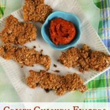 Crispy Chicken Fingers – Gluten & Egg Free