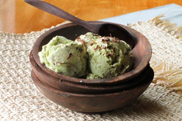 PALEO Chocolate Chip Mint Ice Cream-Dairy Free-9239