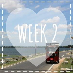 week 2 sri icoon tk