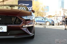 Zlot Ford Mustang (12)