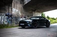 Ford Mustang Bullitt fot. Piotr Majka (7)