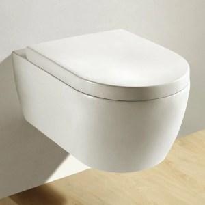 Test NEG Spülrandloses WC