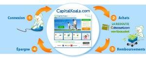 schema-capitalkoala