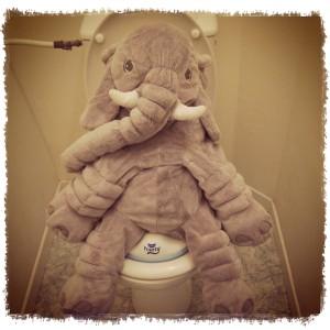 Reducteur-Pourty-elephant-