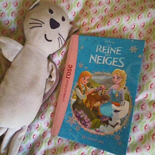 Reine des Neiges livre bibliothèque rose