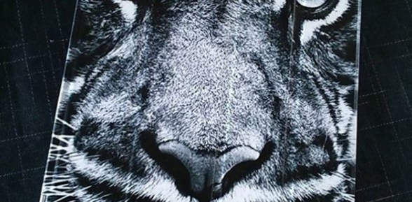 Une coque Ipad tigrement personnalisée
