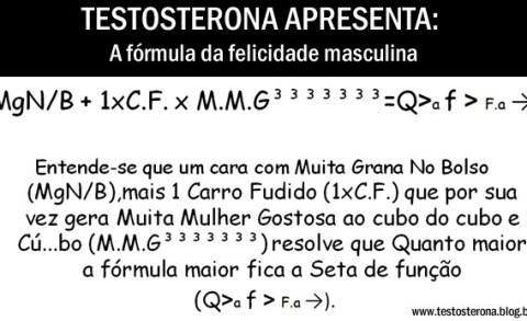 Fórmula da felicidade masculina