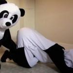 As pessoas estão produzindo filmes pornôs caseiros vestidos de panda, para salvá-los da extinção
