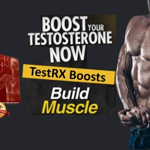 Test RX Reviews and Results ǀ Shocking Truth Revealed
