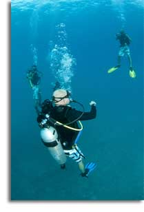 The National Board Of Diving And Hyperbaric Medical Technology Diver Medic Technician Training And Certification
