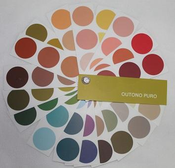 Resultado de imagem para paleta de cores outono puro