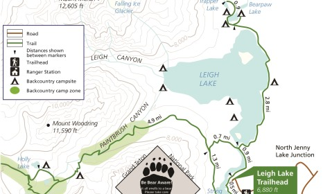 Image result for leigh lake trail