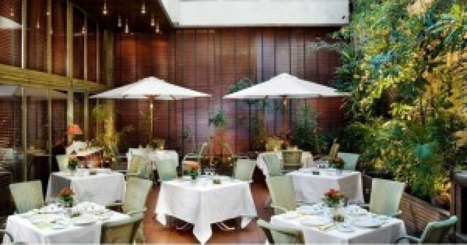 Restaurante La Albufera terraza Te Veo en Madrid