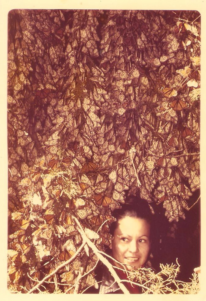 """Catalina Trail, January 2, 1975, the day she and Ken Brugger """"discovered"""" the Monarch butterfly Overwintering Sites"""