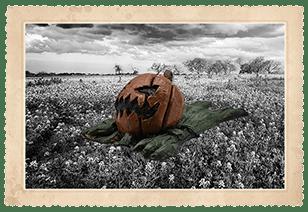 Shoulder Buddy - Pumpkin