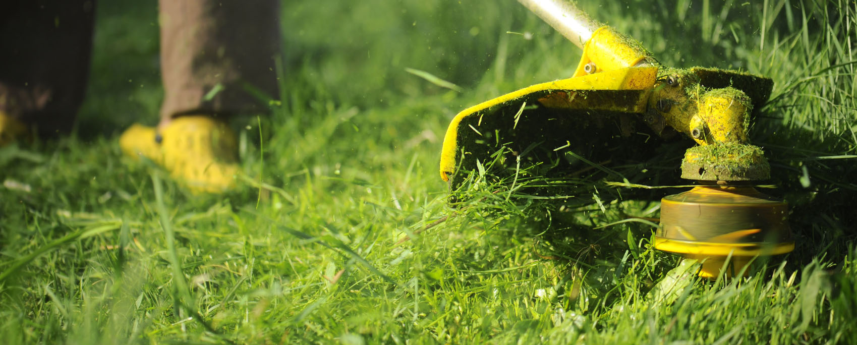 Commercial Landscape Maintenance In College Station Round