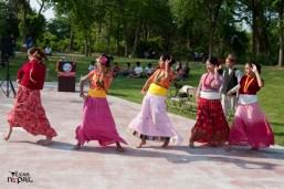 nepali-new-year-2068-celebration-nst-20110410-128