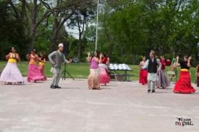 nepali-new-year-2068-celebration-nst-20110410-23