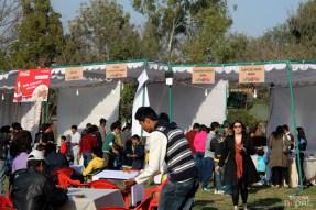 momo-mania-kathmandu-20120310-6