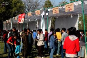 momo-mania-kathmandu-20120310-8