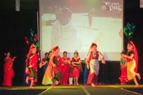 ana-cultural-night-dallas-20120630-112