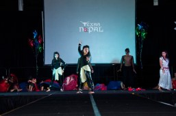 ana-cultural-night-dallas-20120630-139