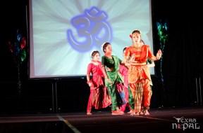 ana-cultural-night-dallas-20120630-15