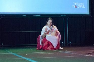 ana-cultural-night-dallas-20120630-152