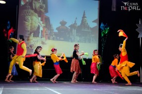 ana-cultural-night-dallas-20120630-55