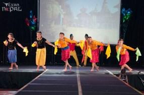 ana-cultural-night-dallas-20120630-56