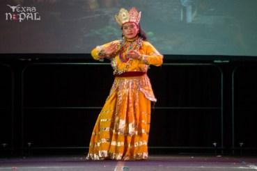 ana-cultural-night-dallas-20120630-80