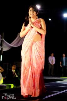 ana-fashion-extravaganza-20120630-114