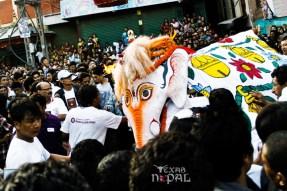 indra-jatra-festival-kathmandu-2012-24