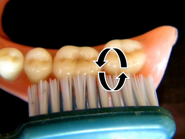 Use gentle pressure and a circular motion on the sides of the teeth.