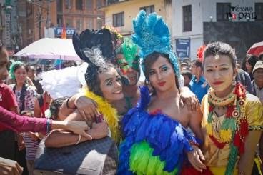 gaijatra-kathmandu-20130822-7