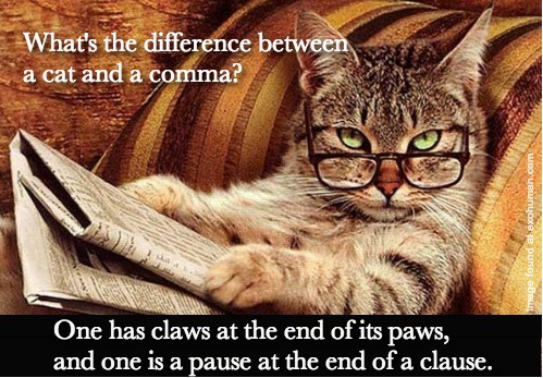 cat-vs-comma