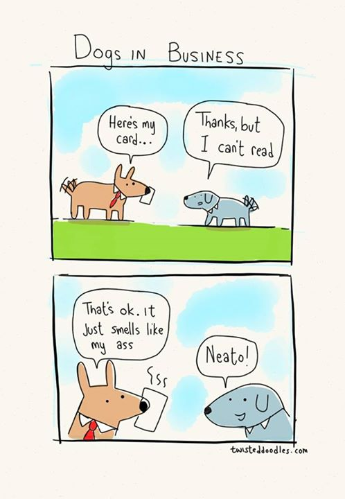 dogs-in-business-funny