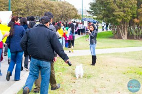 walk-for-nepal-dallas-20141102-79