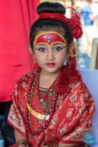 Indra Jatra Celebration 2015 Texas - Photo 100