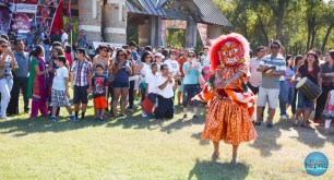 Indra Jatra Celebration 2015 Texas - Photo 184